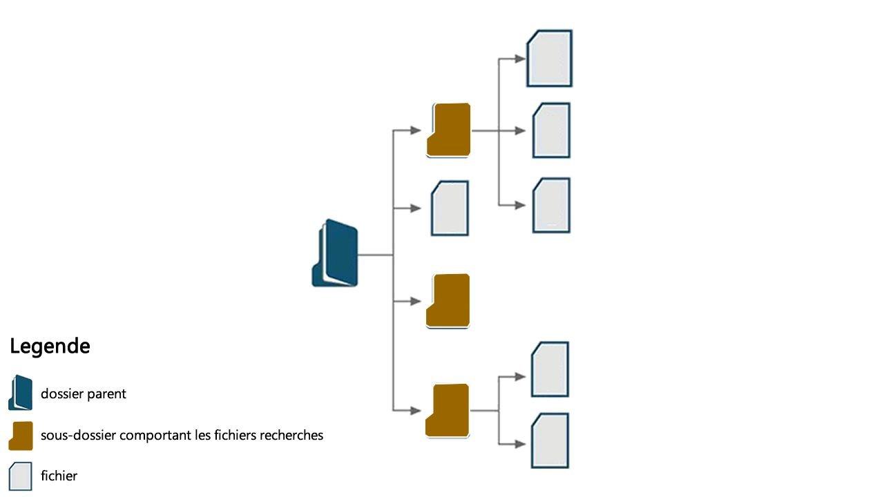 Comment copier les fichiers de plusieurs sous-dossiers vers un dossier central?