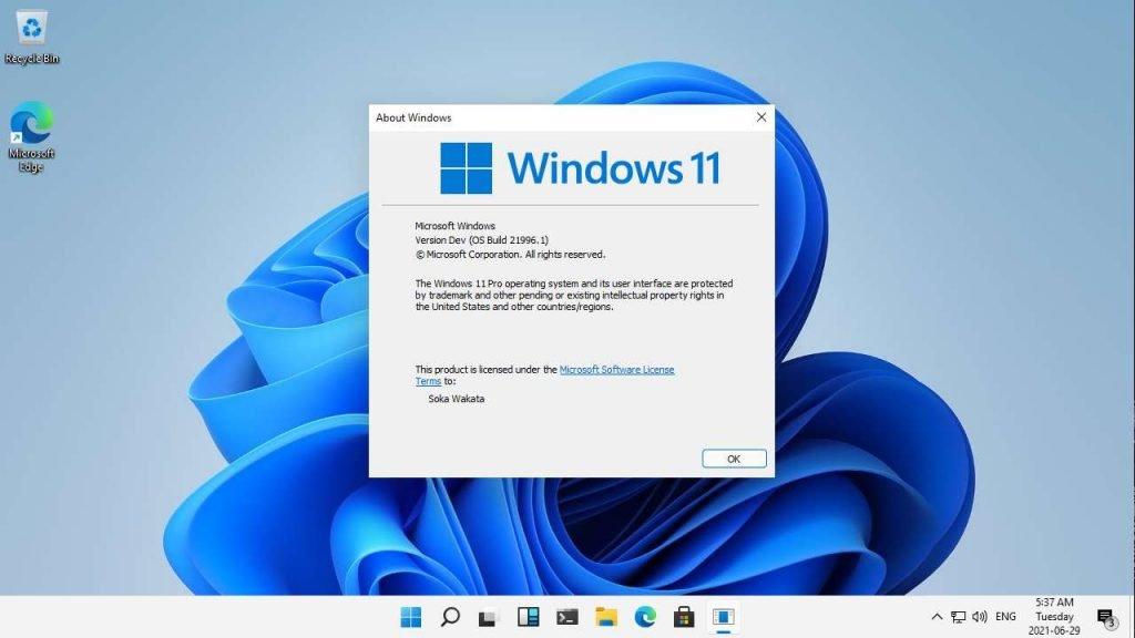 Microsoft Windows 11 version Dev